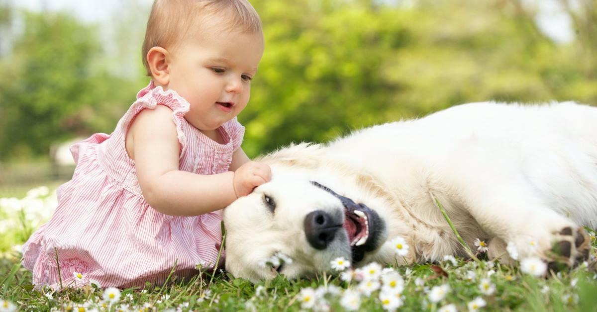Da li je zdravo da deca žive sa životinjama